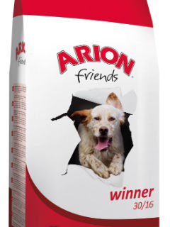 Arion Friends Winner