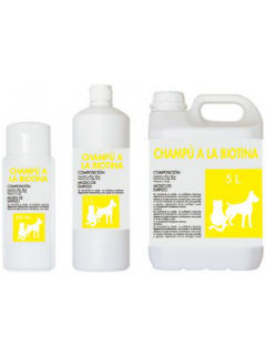 champuALaBiotina-300x216