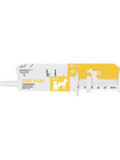 diarVital-300x82