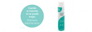 shampoo_espuma_seca