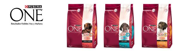 productos_perro_one